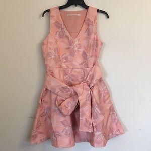 Rachel Roy Pink Printed Skater Dress Belted New